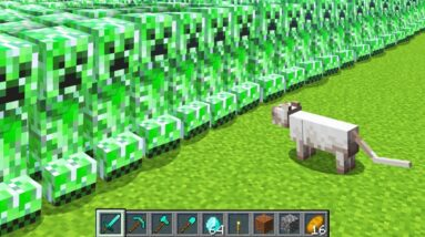 3,000,000 Creepers vs 1 Cat in Minecraft