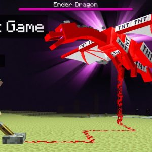 I Made a TNT Ender Dragon In MINECRAFT! (Explosive)
