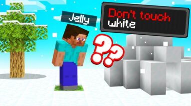 If You Touch White You DIE In Minecraft…